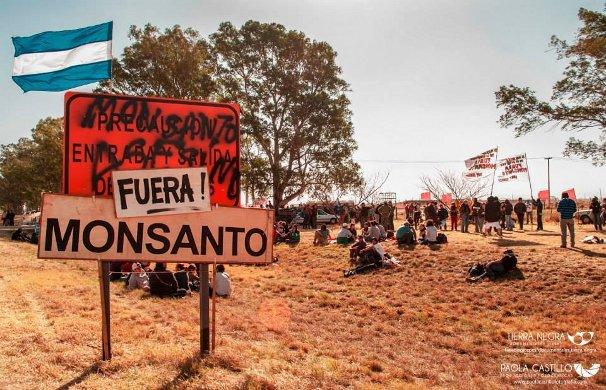 Un mes de bloqueo a Monsanto