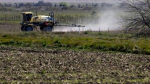 agroquimicos y cancer - en baja