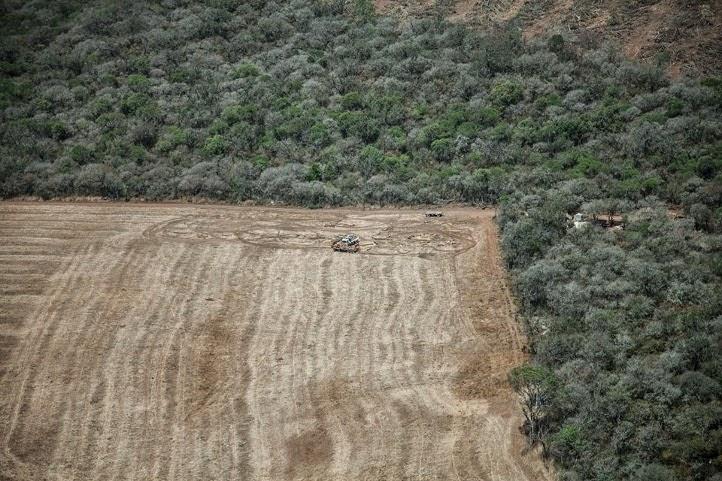 Desmontes y genocidio indígena