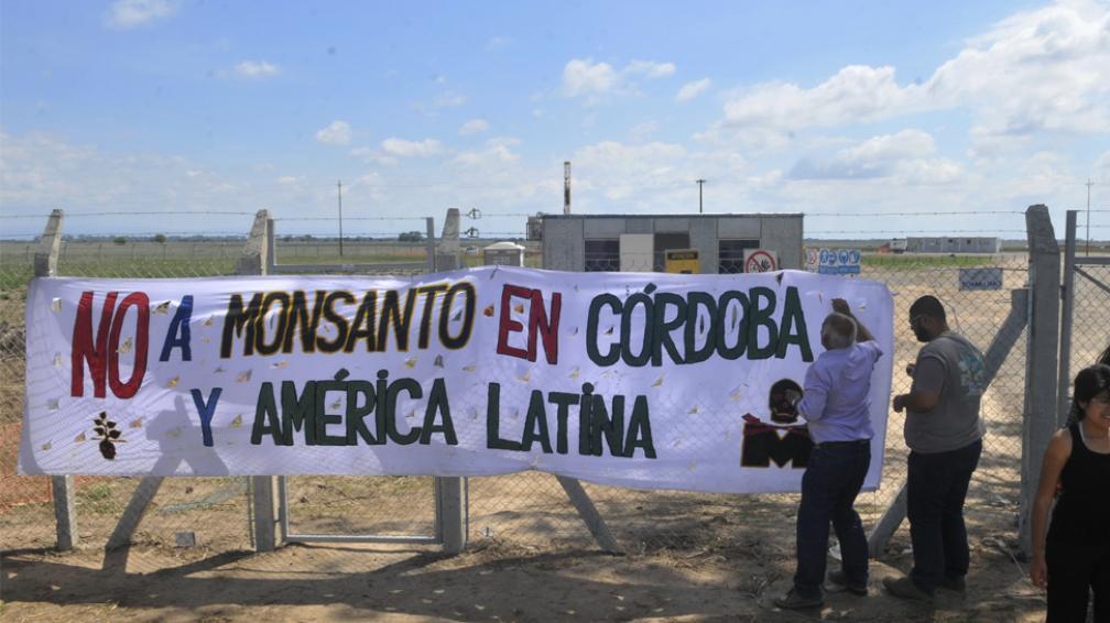 El freno a Monsanto cumple un año